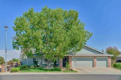 Elk Grove Single Family Home For Sale: 9829 Emerald Park Drive