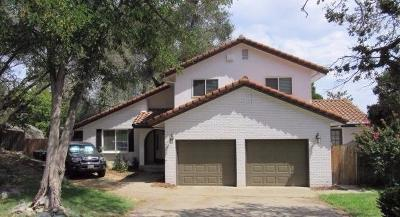 Folsom Single Family Home For Sale: 167 Berry Creek Drive