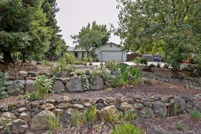 Folsom Single Family Home For Sale: 9502 Orangevale Avenue
