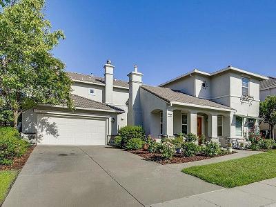 Rocklin Single Family Home For Sale: 1643 Albatross Way