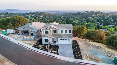 Auburn Single Family Home For Sale: 1134 Lantern View Drive