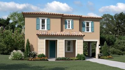 Mountain House Single Family Home For Sale: 485 East Marcello Avenue
