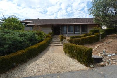 Placerville Single Family Home For Sale: 1590 Lotus Road