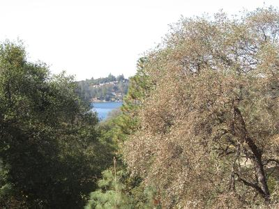 Auburn Residential Lots & Land For Sale: 12932 Austin Forest Circle