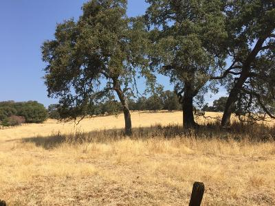 Amador County Residential Lots & Land For Sale: 9005 Old Sacramento Road