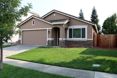 West Sacramento Single Family Home For Sale: 1635 Princeton Road