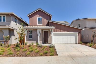 Elk Grove Single Family Home For Sale: 9673 Oak Reserve Lane