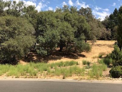 El Dorado Hills Residential Lots & Land For Sale: 1683 Carnegie Way