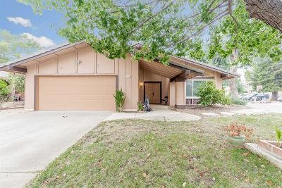 Orangevale Single Family Home For Sale: 5257 Butterwood Circle
