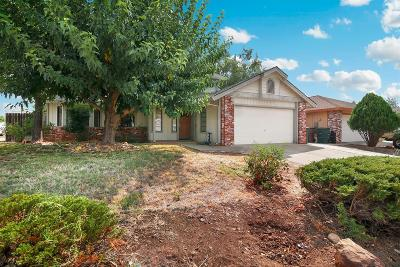 Lincoln Single Family Home For Sale: 623 Zoe Ann Drive