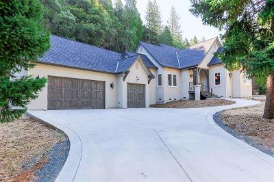 Nevada City Single Family Home For Sale: 11323 North Bloomfield