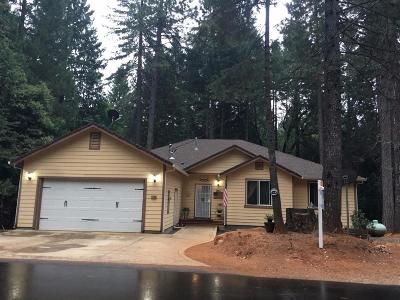 Bangor, Berry Creek, Chico, Clipper Mills, Gridley, Oroville Single Family Home For Sale: 11284 Holiday Drive