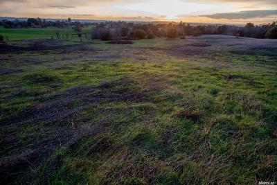 Placer County Commercial Lots & Land For Sale: 6700 Mount Vernon Road