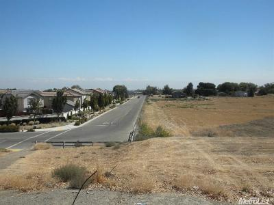 Lathrop Commercial Lots & Land For Sale: 18401 Queirolo Road