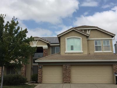 Elk Grove Single Family Home For Sale: 7213 Ackley Drive