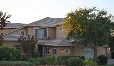 El Dorado Hills Single Family Home For Sale: 1008 Terracina Drive