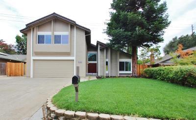 Orangevale Single Family Home For Sale: 8128 Sundance Drive