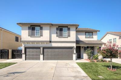Manteca Single Family Home For Sale: 685 Vasconcellos Avenue