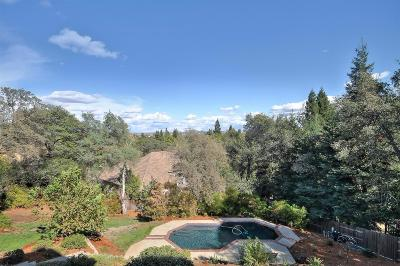Folsom Single Family Home For Sale: 206 American River Canyon Drive