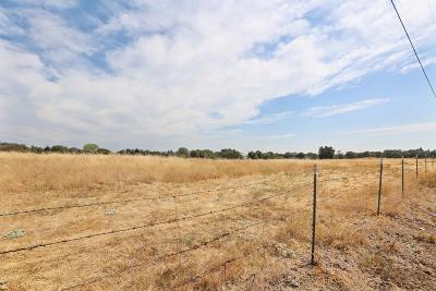 Loomis Residential Lots & Land For Sale: Dick Cook Road