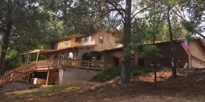 Foresthill Single Family Home For Sale: 6167 Silverleaf Drive