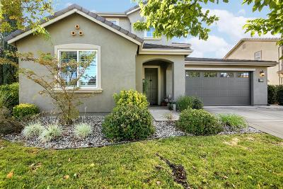 Roseville Single Family Home For Sale: 1240 Kirkhill Drive