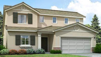 Sacramento Single Family Home For Sale: 12 Morisot Way