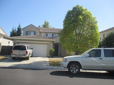Elk Grove Single Family Home For Sale: 9823 Harrier Way