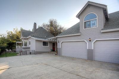 Colfax Single Family Home For Sale: 149 Grass Valley Street