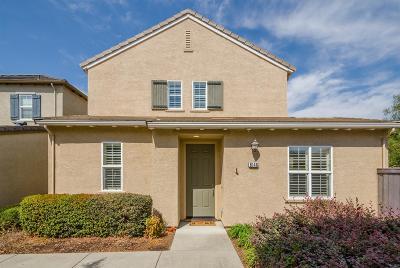 Orangevale Single Family Home For Sale: 6146 Passiflora Lane