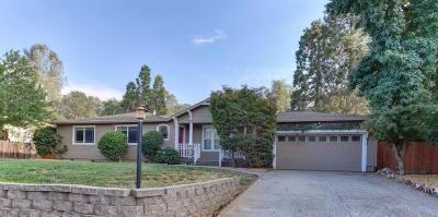 Auburn Single Family Home For Sale: 132 Sylvan Vista Drive