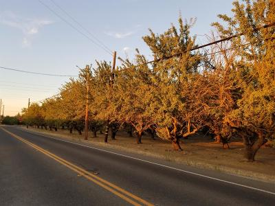 Modesto Commercial Lots & Land For Sale: 6220 Tully Road