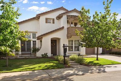 Sacramento Single Family Home For Sale: 1750 Montara Avenue