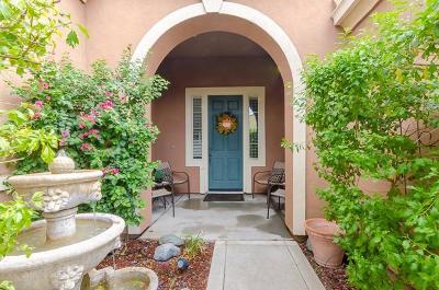 Sacramento Single Family Home For Sale: 520 Dnieper River Way