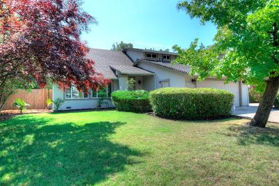 Citrus Heights Single Family Home For Sale: 8168 Twin Oaks Avenue