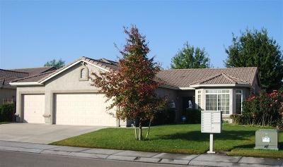 Stockton Single Family Home For Sale: 9236 Bridalveil Circle