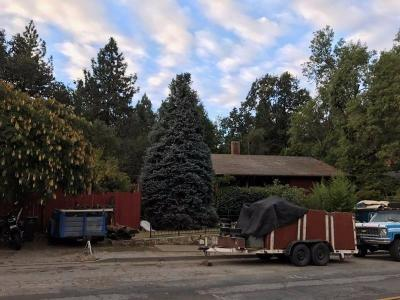Placerville Single Family Home For Sale: 946 Spring Street