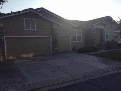 Hayward Single Family Home Active Short Sale: 30027 Woodthrush Place
