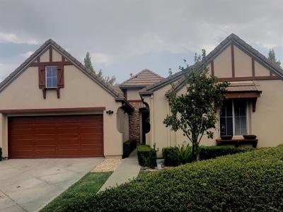 Mountain House Single Family Home For Sale: 568 Farrington Street