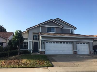Elk Grove Single Family Home For Sale: 6504 Blue Spruce Court