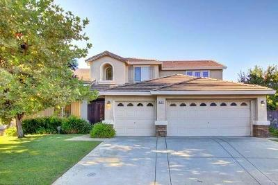 Elk Grove Single Family Home For Sale: 9465 Mainline Drive