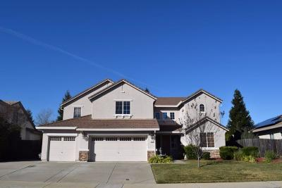 Lincoln Single Family Home For Sale: 1612 Allenwood Circle