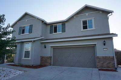 Elk Grove Single Family Home For Sale: 9756 Collie Way