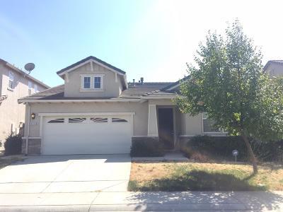 Elk Grove Single Family Home For Sale: 8114 Suarez Way