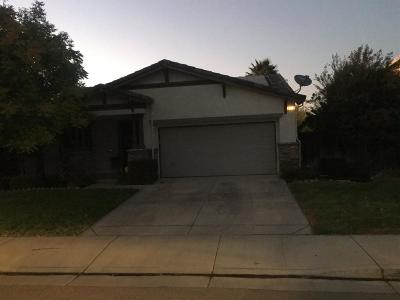 Tracy Single Family Home For Sale: 881 Windsong Drive