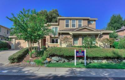 Granite Bay Single Family Home For Sale: 9760 Swan Lake Drive