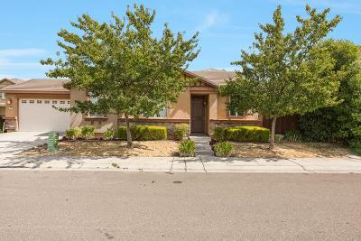 Sacramento Single Family Home For Sale: 260 Caravaggio Circle