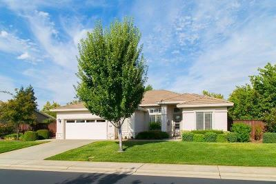 Rocklin Single Family Home For Sale: 4148 Tahoe Vista Drive