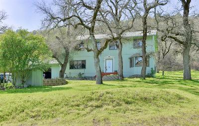 El Dorado Single Family Home For Sale: 6380 Union Mine Road