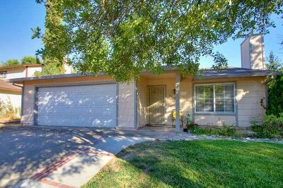 Sacramento Single Family Home For Sale: 4632 Don Julio Boulevard